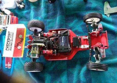 Frog Red Prince_TP12-compressed